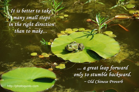 It is better to take many small steps in the right direction than to make a great leap forward only to stumble backward. ~  Old Chinese Proverb