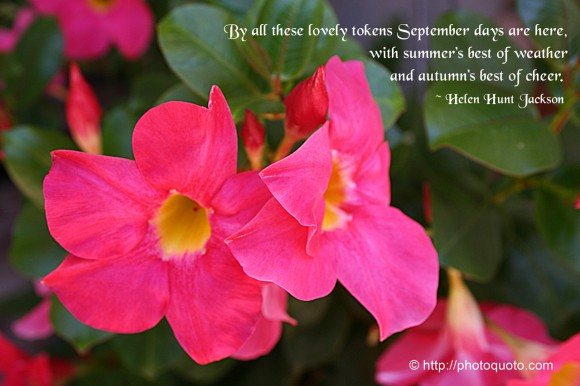 By all these lovely tokens September days are here, With summer's best of weather And autumn's best of cheer. ~ Helen Hunt Jackson