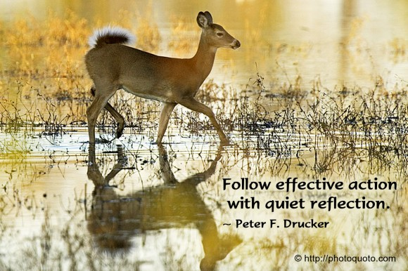 Follow effective action with quiet reflection. ~ Peter F. Drucker