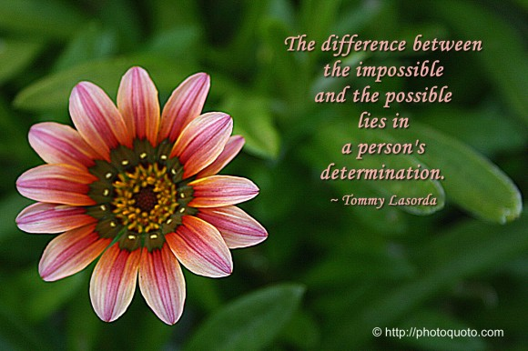 The difference between the impossible and the possible lies in a person's determination. ~ Tommy Lasorda