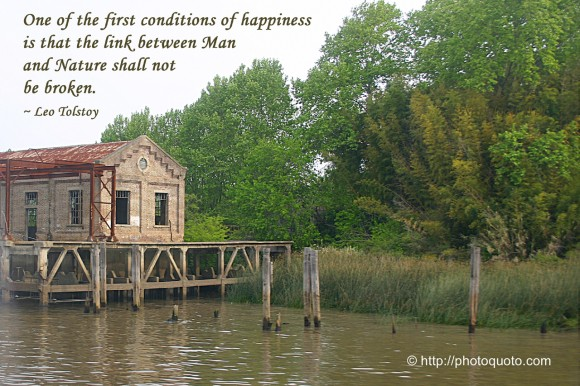 One of the first conditions of happiness is that the link between Man and Nature shall not be broken. ~ Leo Tolstoy