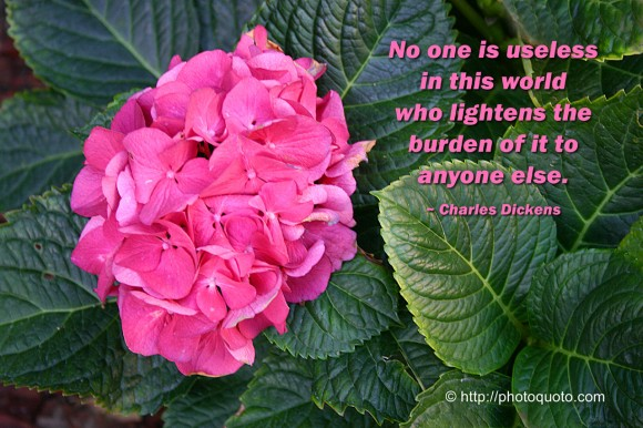 No one is useless in this world who lightens the burden of it to anyone else. ~ Charles Dickens