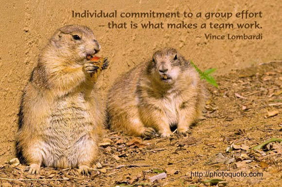 Individual commitment to a group effort -- that is what makes a team work. ~ Vince Lombardi