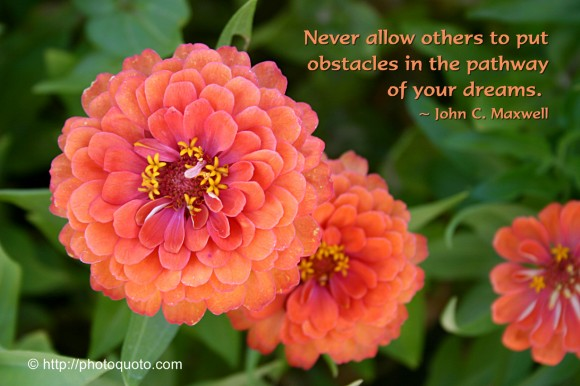 Never allow others to put obstacles in the pathway of your dreams. ~ John C. Maxwell