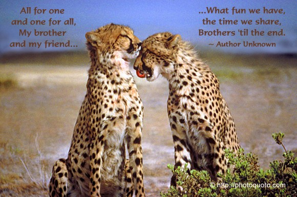 All for one and one for all, my brother and my friend... what fun we have, the time we share, brothers 'til the end. ~ Author Unknown
