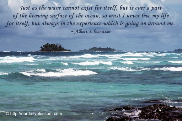 Just as the wave cannot exist for itself, but is ever a part of the heaving surface of the ocean, so must I never live my life for itself, but always in the experience which is going on around me. ~  Albert Schweitzer