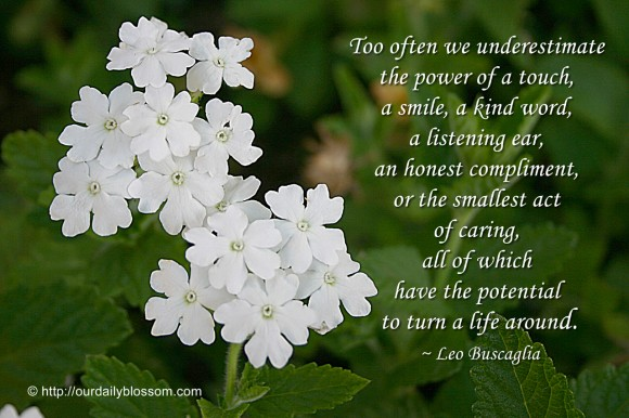 Too often we underestimate the power of a touch, a smile, a kind word, a listening ear, an honest compliment, or the smallest act of caring, all of which have the potential to turn a life around. ~ Leo Buscaglia