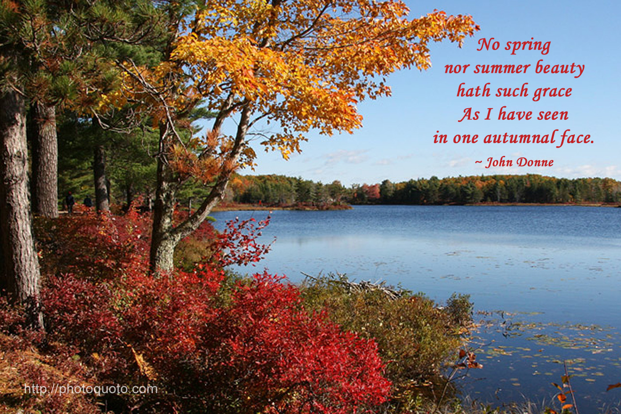 Percy bysshe shelley quotes quotesgram - Autumn Inspirational Quotes Quotesgram