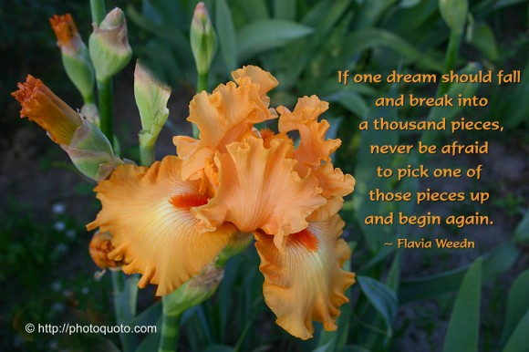 If one dream should fall and break into a thousand pieces, never be afraid to pick one of those pieces up and begin again. ~ Flavia Weedn