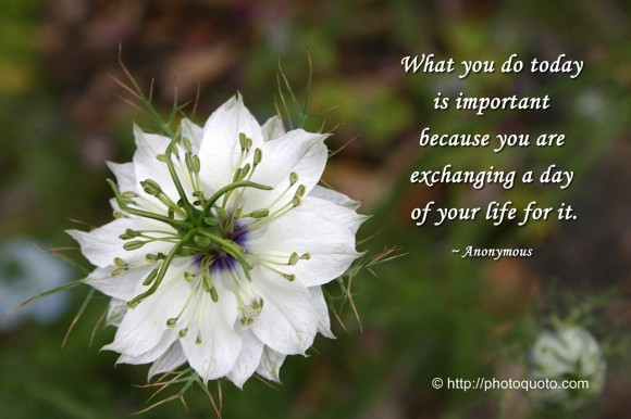What you do today is important because you are exchanging a day of your life for it. ~ Anonymous