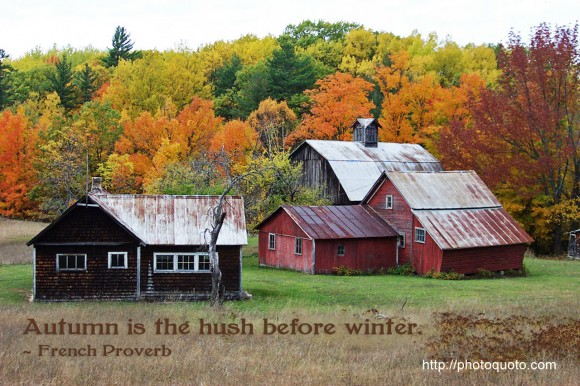Autumn is the hush before winter. ~ French Proverb