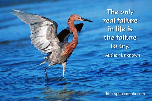The only real failure in life is the failure to try. ~ Author Unknown