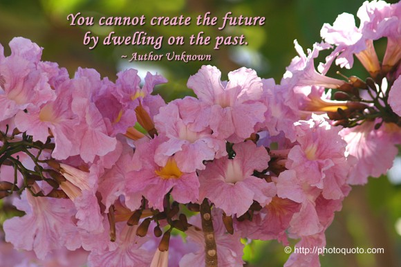 You cannot create the future by dwelling on the past. ~ Author Unknown