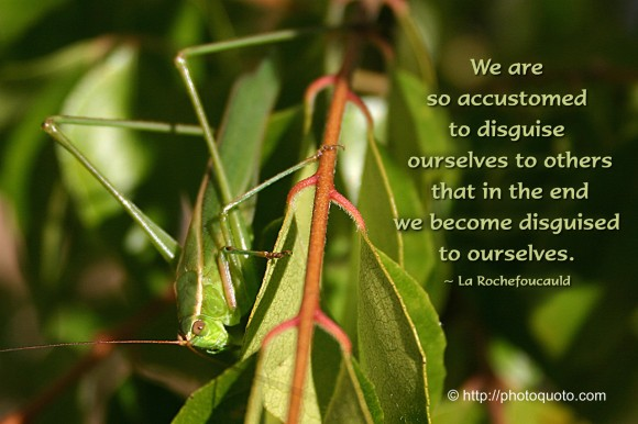We are so accustomed to disguise ourselves to others that in the end we become disguised to ourselves. ~ La Rochefoucauld