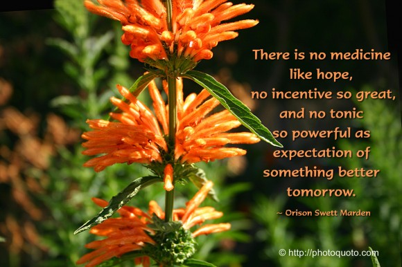 There is no medicine like hope, no incentive so great, and no tonic so powerful as expectation of something better tomorrow. ~ Orison Swett Marden
