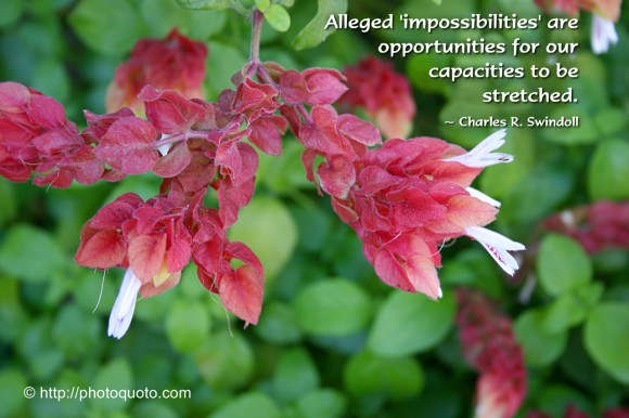 Alleged 'impossibilities' are opportunities for our capacities to be stretched. ~ Charles R. Swindoll