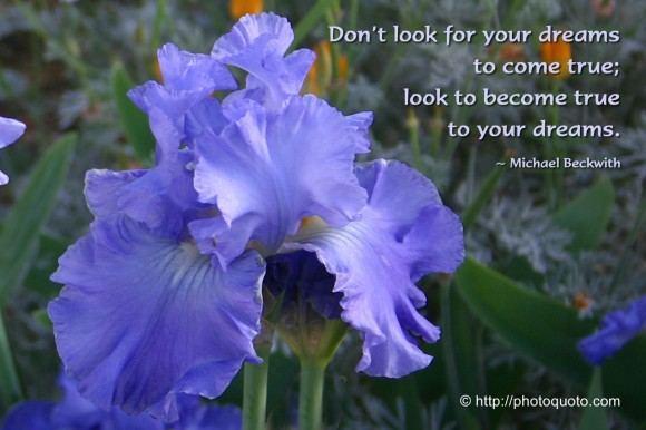 Don't look for your dreams to come true; look to become true to your dreams. ~ Michael Beckwith