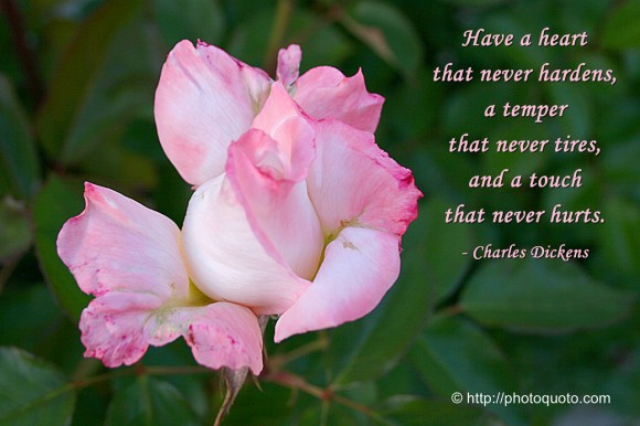 Have a heart that never hardens, a temper that never tires, and a touch that never hurts. ~ Charles Dickens