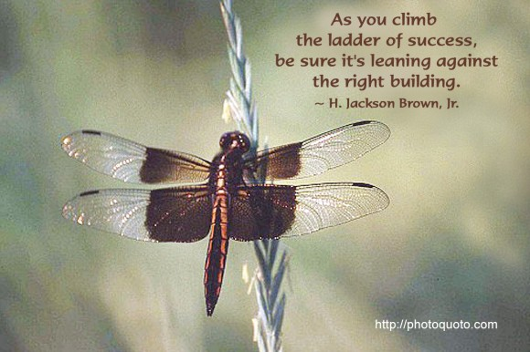 As you climb the ladder of success, be sure it's leaning against the right building. ~ H. Jackson Brown, Jr.