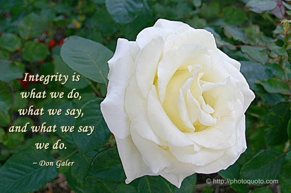 Integrity is what we do, what we say, and what we say we do. ~  Don Galer
