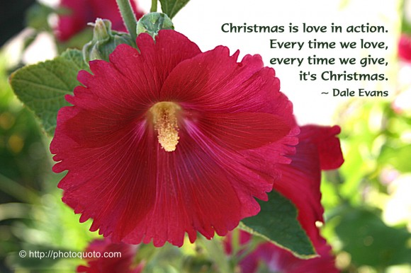 Christmas is love in action. Every time we love, every time we give, it's Christmas. ~ Dale Evans