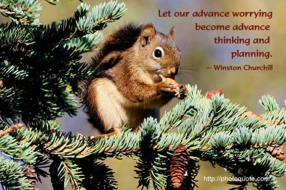 Let our advance worrying become advance thinking and planning. ~ Winston Churchill