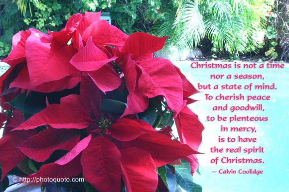 Christmas is not a time nor a season, but a state of mind. To cherish peace and goodwill, to be plenteous in mercy, is to have the real spirit of Christmas. ~ Calvin Coolidge