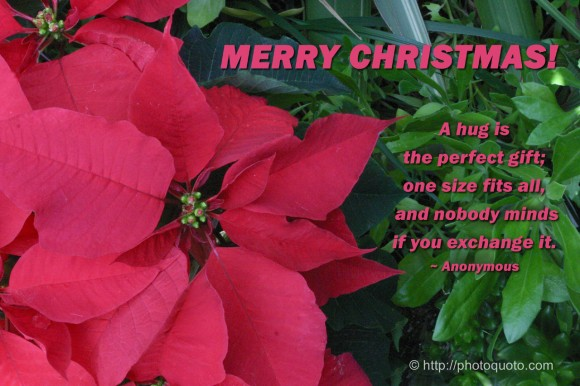A hug is the perfect gift; one size fits all, and nobody minds if you exchange it. ~ Anonymous