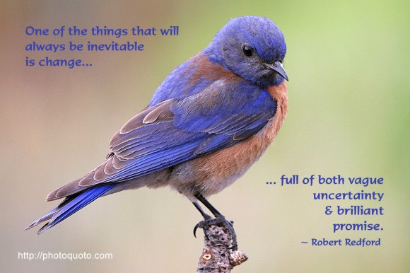 One of the things that will always be inevitable, full of both vague uncertainty and brilliant promise. ~ Robert Redford