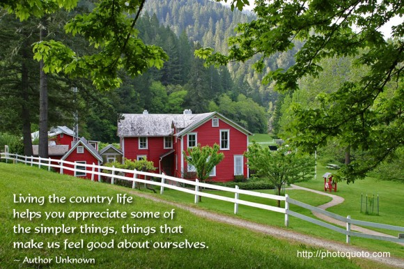 Living the country life helps you appreciate some of the simpler things, things that make us feel good about ourselves. ~ Author Unknown
