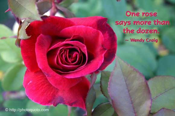 One rose says more than the dozen. ~ Wendy Craig