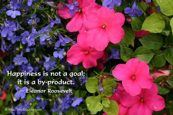 Happiness is not a goal; it is a by-product. ~ Eleanor Roosevelt