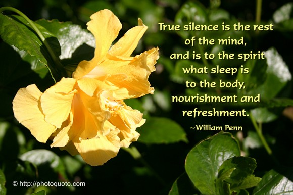 True silence is the rest of the mind, and is to the spirit what sleep is to the body, nourishment and refreshment. ~ William Penn