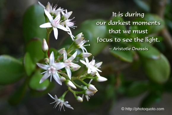 It is during our darkest moments that we must focus to see the light. ~ Aristotle Onassis