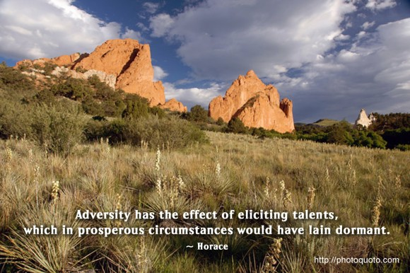 Adversity has the effect of eliciting talents, which in prosperous circumstances would have lain dormant. ~ Horace