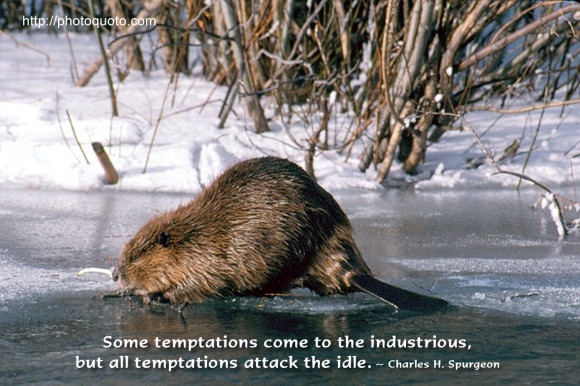 Some temptations come to the industrious, but all temptations attack the idle. ~ Charles H. Spurgeon