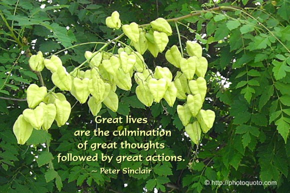 Great lives are the culmination of great thoughts followed by great actions. ~ Peter Sinclair
