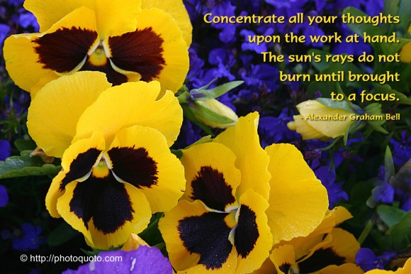 Concentrate all your thoughts upon the work at hand. The sun's rays do not burn until brought to a focus. ~  Alexander Graham Bell