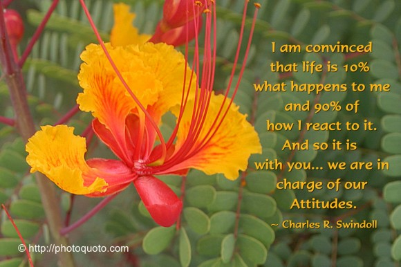 I am convinced that life is 10% what happens to me and 90% of how I react to it. And so it is with you... we are in charge of our Attitudes. ~ Charles R. Swindoll
