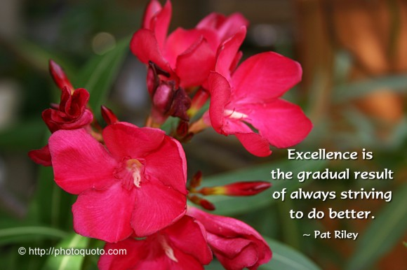 Excellence is the gradual result of always striving to do better. ~  Pat Riley