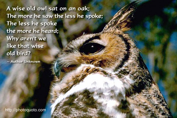 A wise old owl sat on an oak; The more he saw the less he spoke; The less he spoke the more he heard; Why aren't we like that wise old bird? ~ Author Unknown