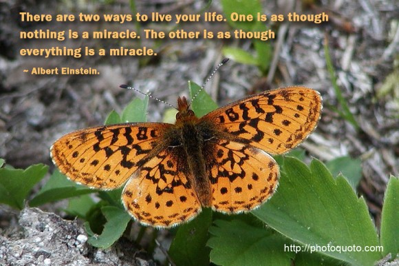 There are two ways to live your life. One is as though nothing is a miracle. The other is as though everything is a miracle. ~ Albert Einstein.