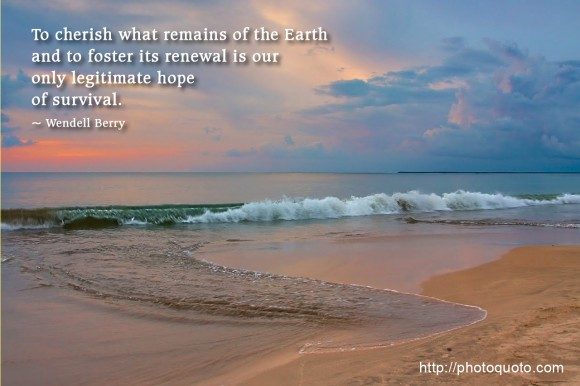 To cherish what remains of the Earth and to foster its renewal is our only legitimate hope of survival. ~ Wendell Berry