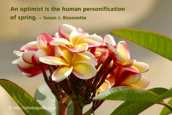 An optimist is the human personification of spring. ~ Susan J. Bissonette