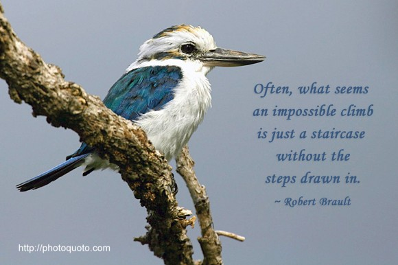 Often, what seems an impossible climb is just a staircase without the steps drawn in. ~ Robert Brault