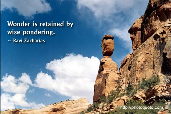 Wonder is retained by wise pondering. ~ Ravi Zacharias