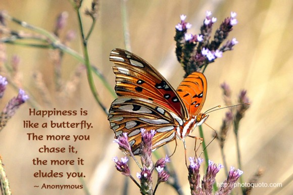 Happiness is like a butterfly. The more you chase it, the more it eludes you. ~ Anonymous 