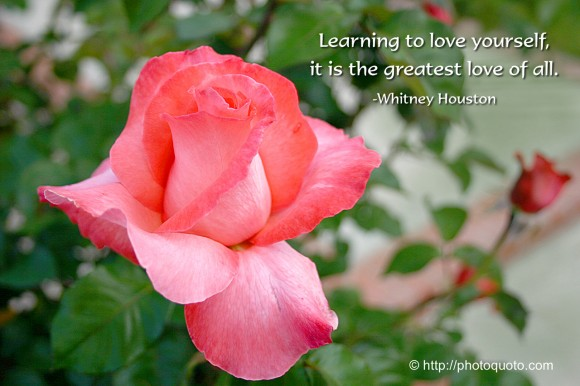 Learning to love yourself  it is the greatest love of all. ~ Whitney Houston