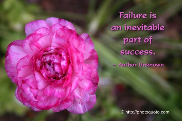 Failure is an inevitable part of success. ~ Author Unknown