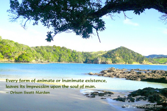Every form of animate or inanimate existence, leaves its impression upon the soul of man. ~ Orison Swett Marden
